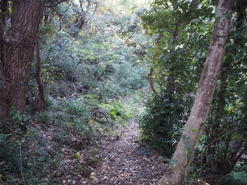 ハイキングコースで十二所果樹園や六浦に抜けることができます。