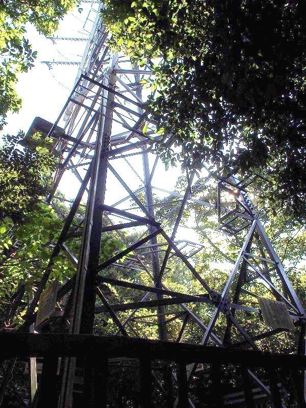 鉄塔を経由する電線は収入源となります。