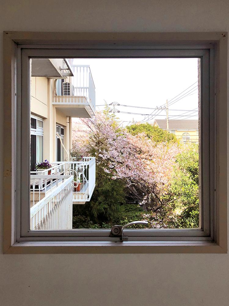 小窓から季節の花を楽しめる(写真:オーナー提供)