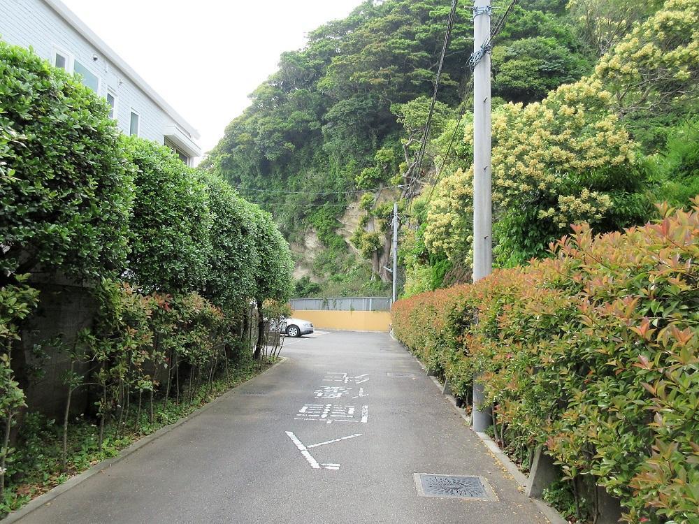 建物への道。鎌倉らしいです