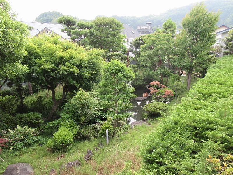 リビングから、マンション内の庭が見える