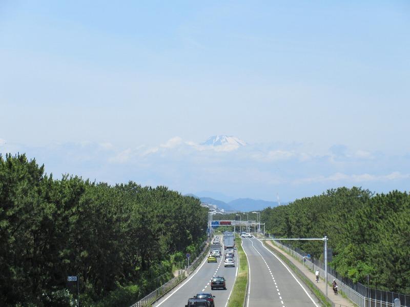 周辺|国道134号線からも富士山が見えます