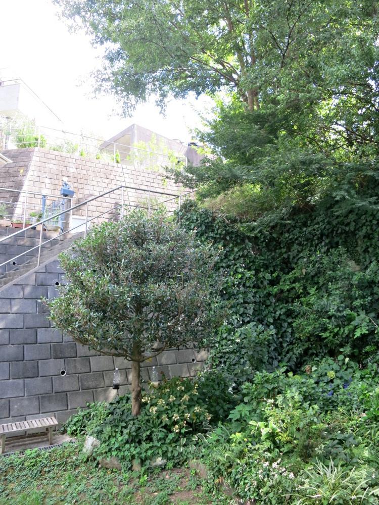 裏に家が建っていますが階段を通るのは登下校の子どもくらい。静かです。