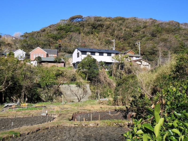 稲村ガ崎にとって、実はめずらしい田んぼのある風景の先にあります