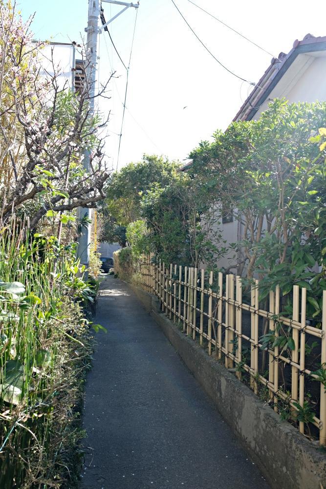 家の脇の細道。