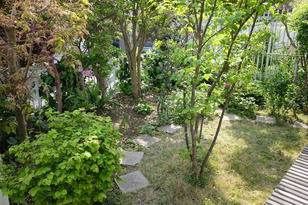手入れの届いた庭。前面道路の視線を気にせず窓を全開にすることができます。