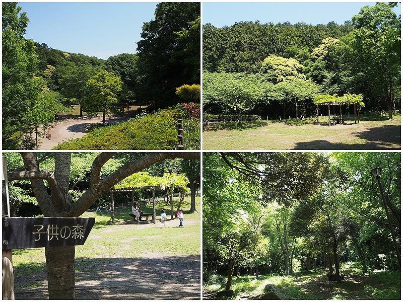隣接する鎌倉中央公園。お子さん連れでにぎわいます。公園から物件は見えませんでした。