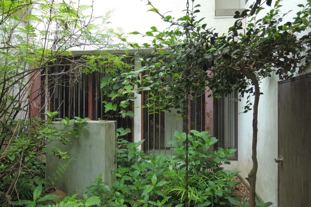 中庭|渡り廊下を見る