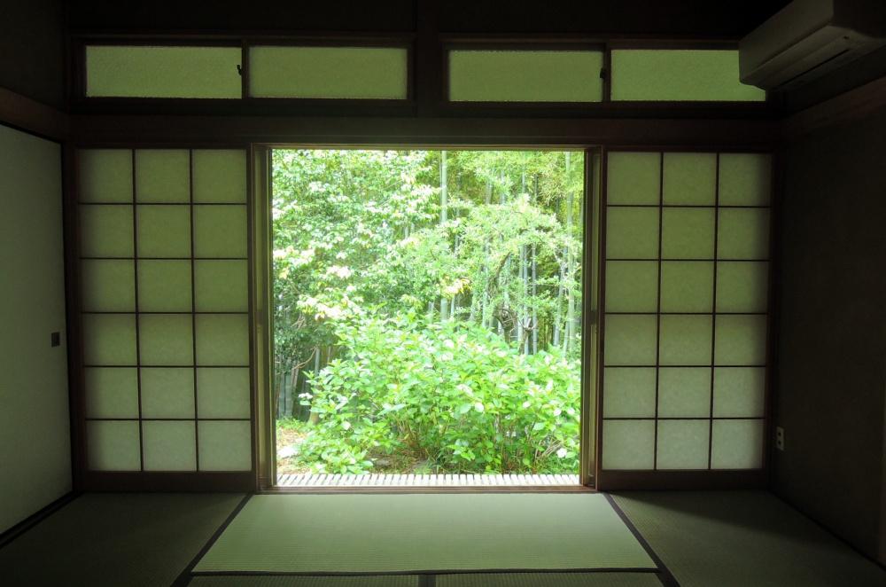 窓の外は竹林|紫陽花も