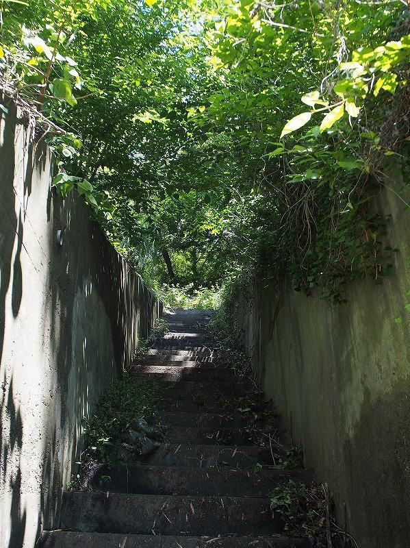 前面道路から敷地への入口