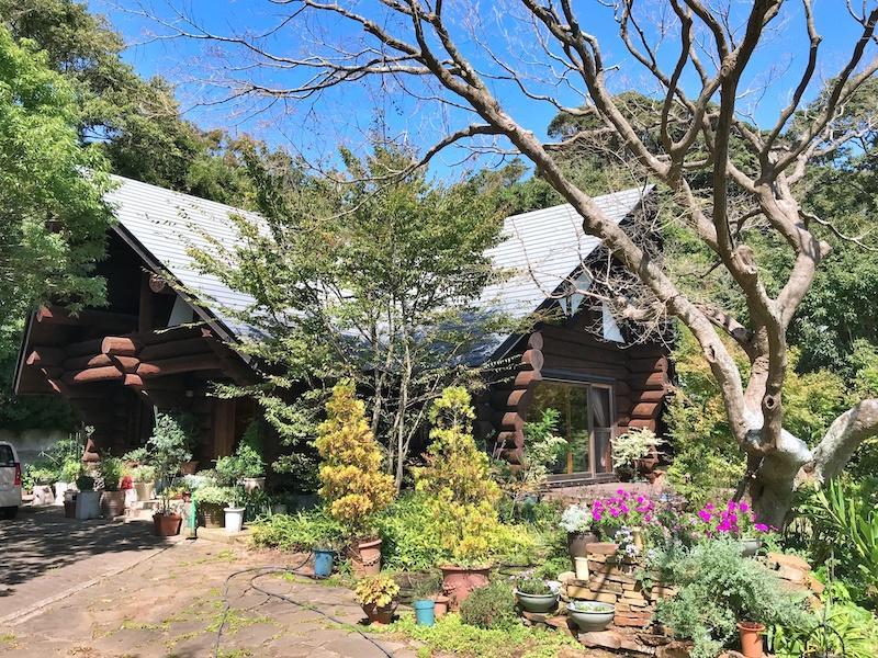 庭と建物との関係|四季折々の花が彩り豊か