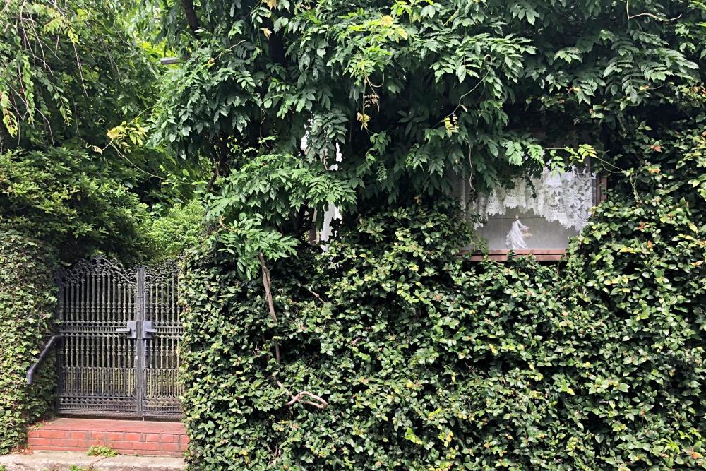 蔦の中に隠れている飾り窓も使用可。サインやメニューなど。隠れているようで、視認性は高いですよ。