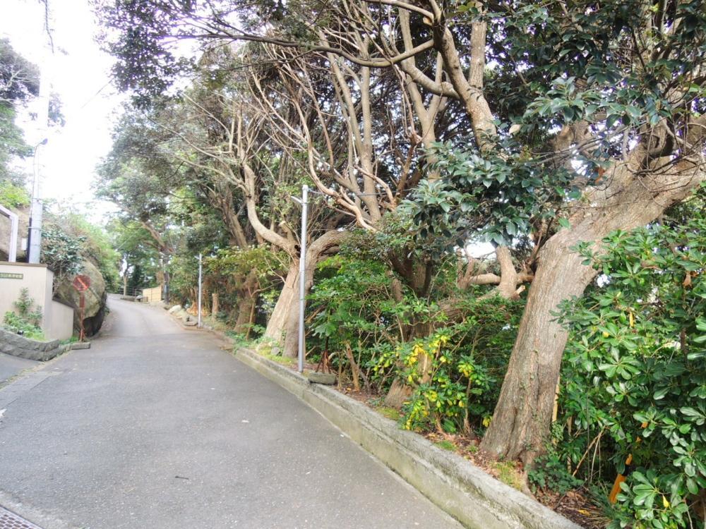 敷地西側は法源寺の参道