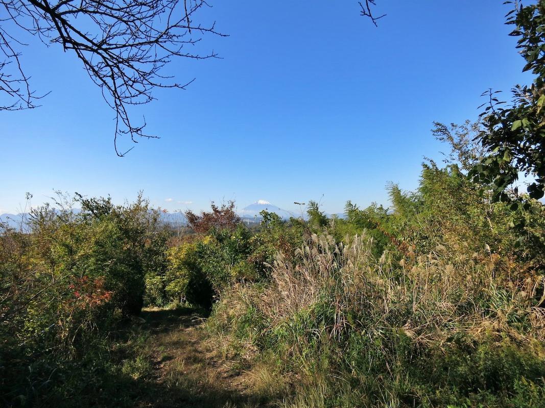 すぐ隣の家庭菜園からは人工物が視界に入らない富士山