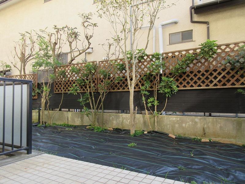 庭(現在は防草シートを敷いています)