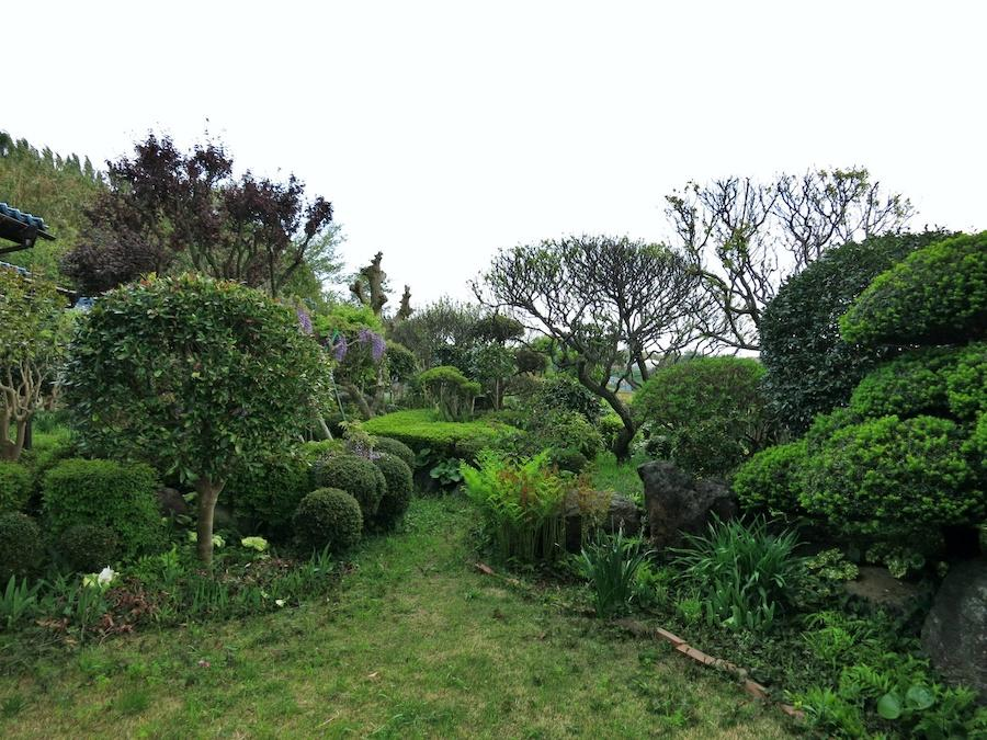 庭|立派な庭石と植木たち|回り込むと富士山も!?