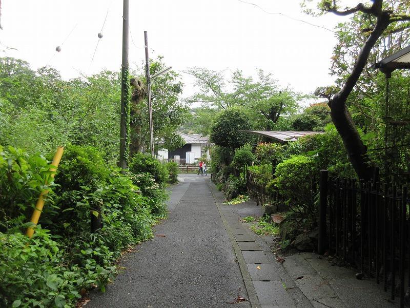 建物の前面道路