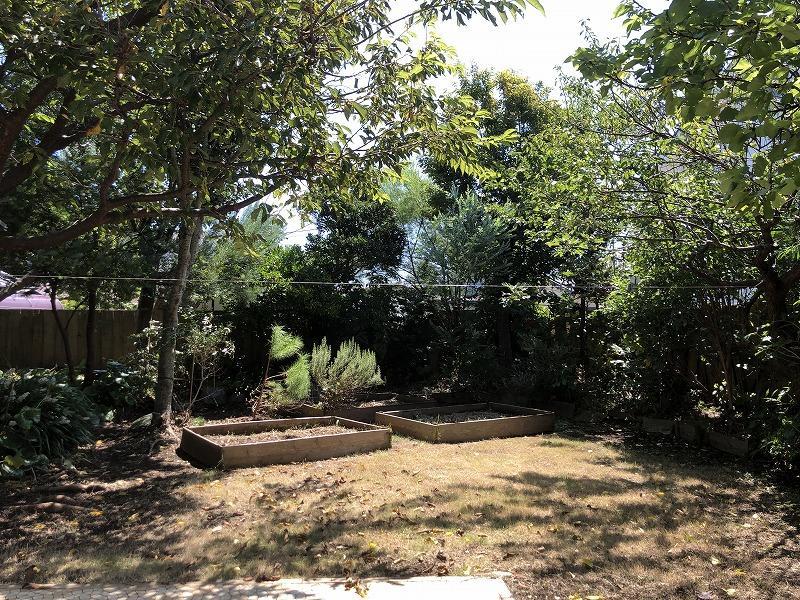 庭も広いです。レイズドベッドが既にあります。