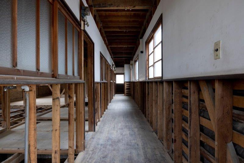【スケルトン棟】1階廊下