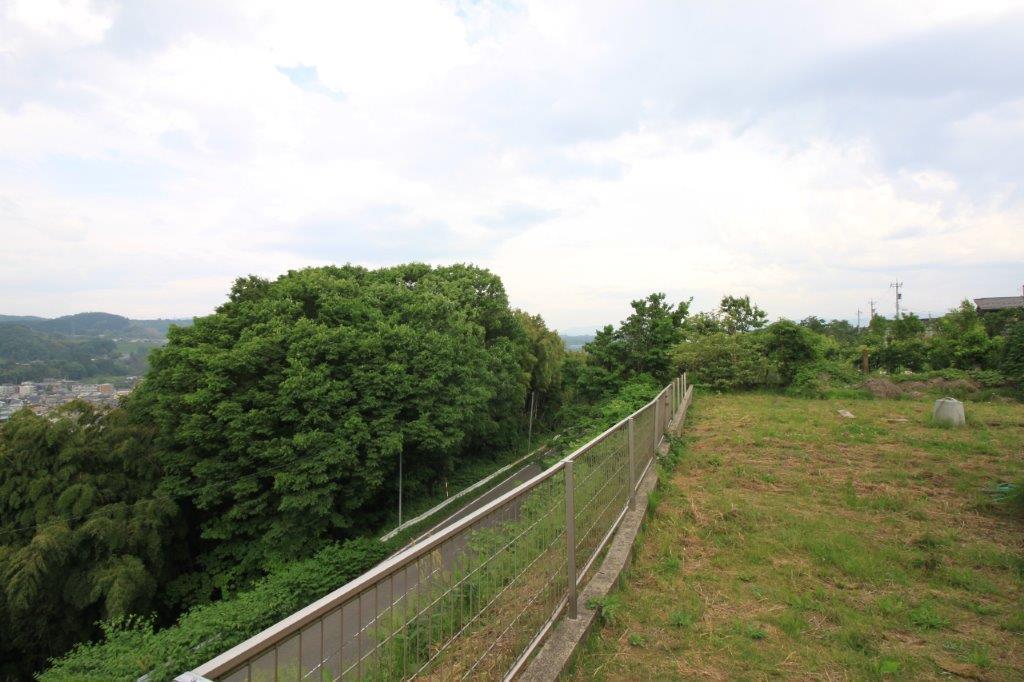 斜面沿いに広がる広大の庭