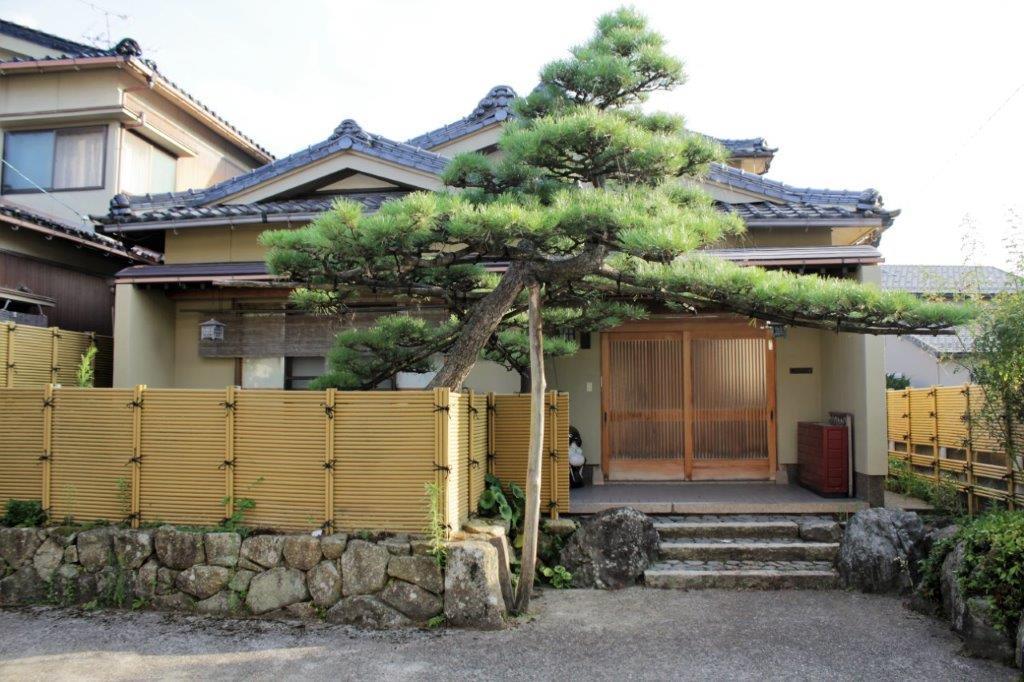 建物と松の木のバランスが絶妙です。