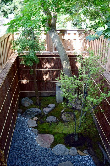 1階から見下ろした坪庭。