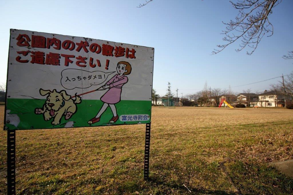 住宅街の中にある大きな公園。