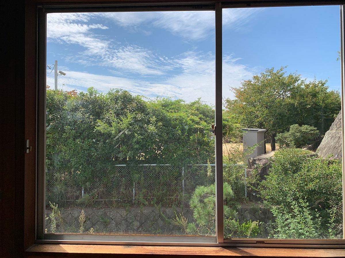 窓には隣の公園