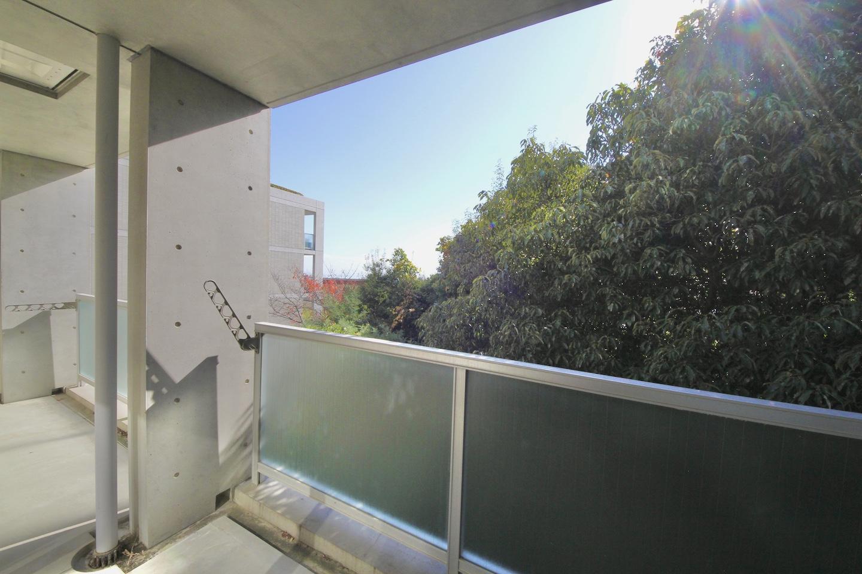 打放しコンクリートと緑のコントラスト