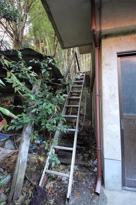 2階へはワイルドに屋外のはしごで