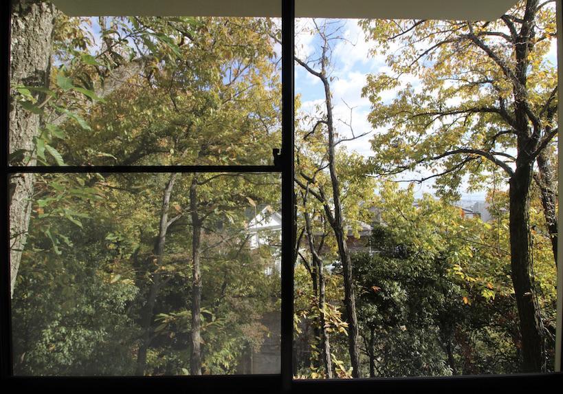 北側洋室窓からの眺め。住宅街にいることを忘れる。