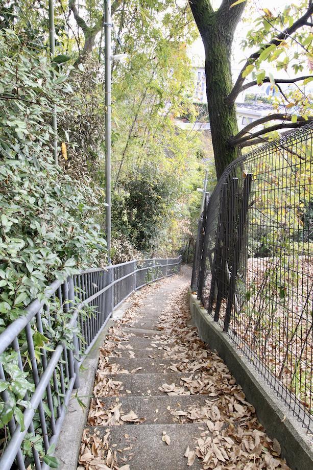 物件へと続く緑豊かな細くて風情ある階段