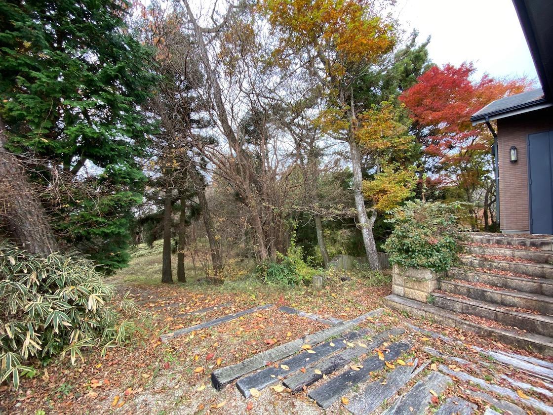 家の周りは四季折々の木々。