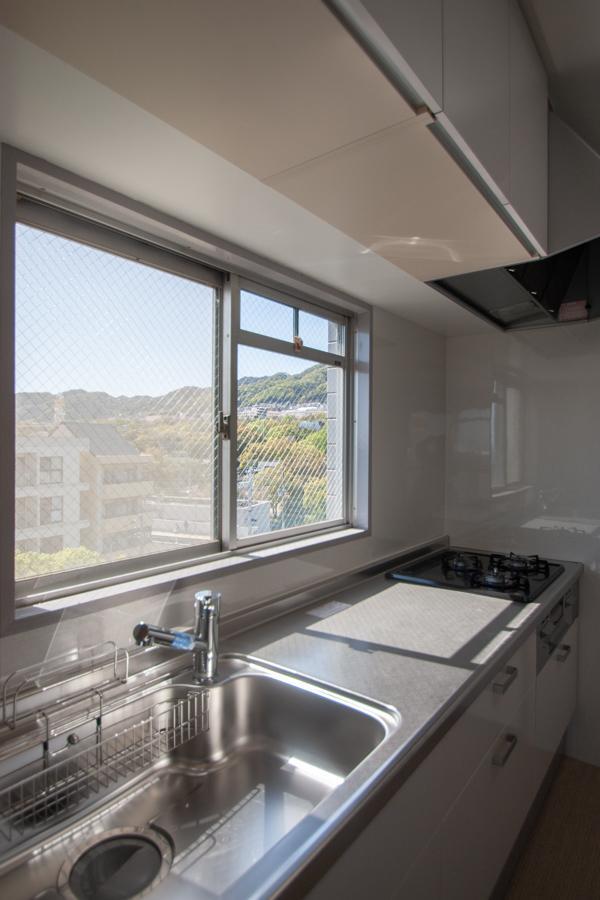 キッチンからも新緑の景色