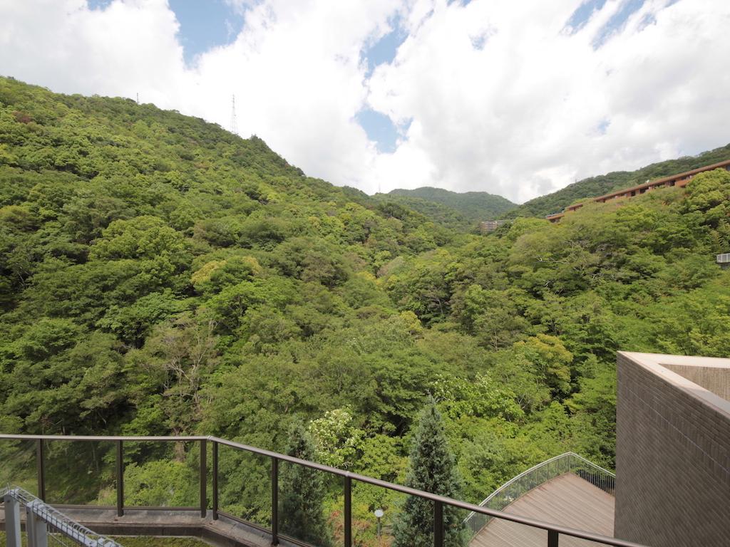 リビング北西側の窓より、山の谷間を見上げる