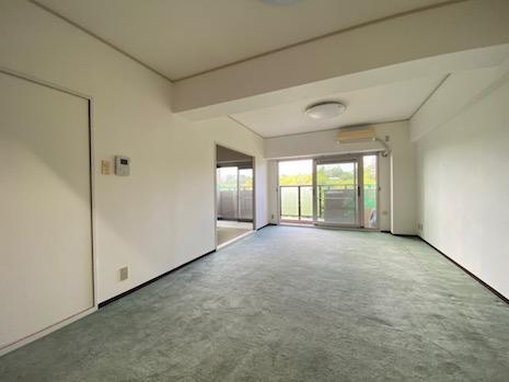 DKは上品なミントグリーンの絨毯。窓の向こうは一面グリーン。