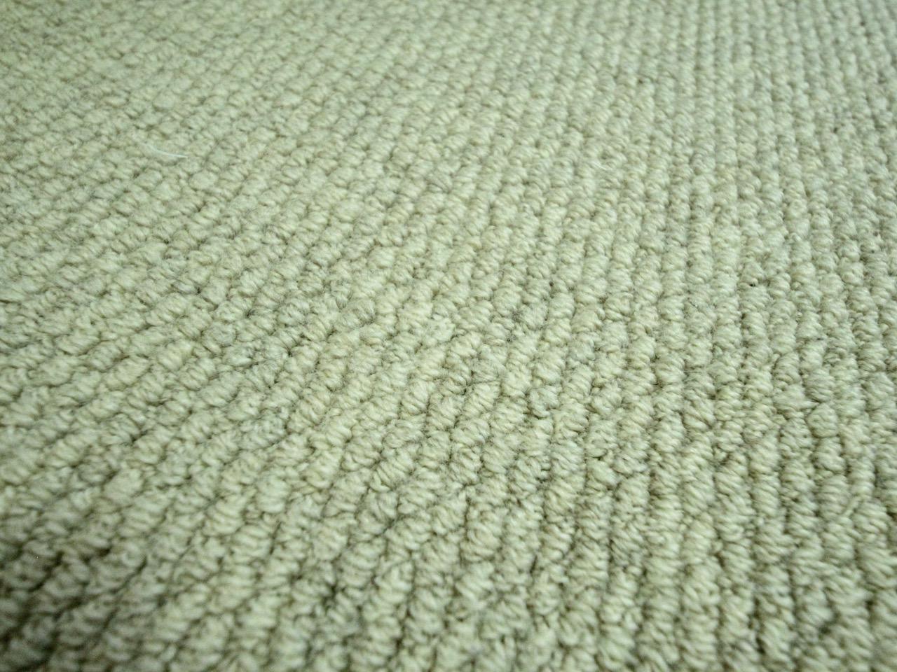 洋室、廊下は厚手でモコモコした絨毯