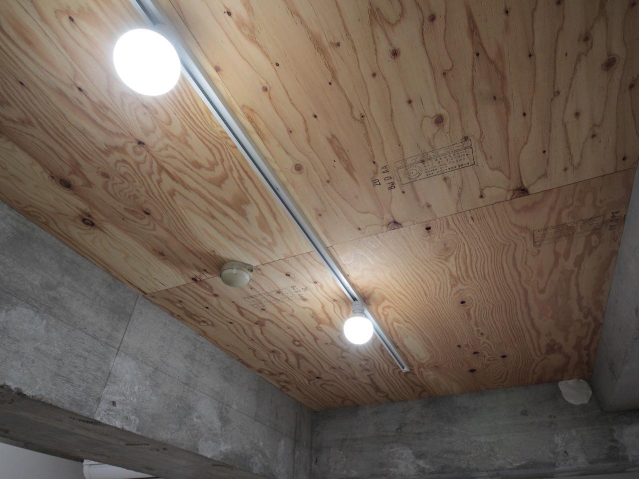 合板+ダクトレール照明