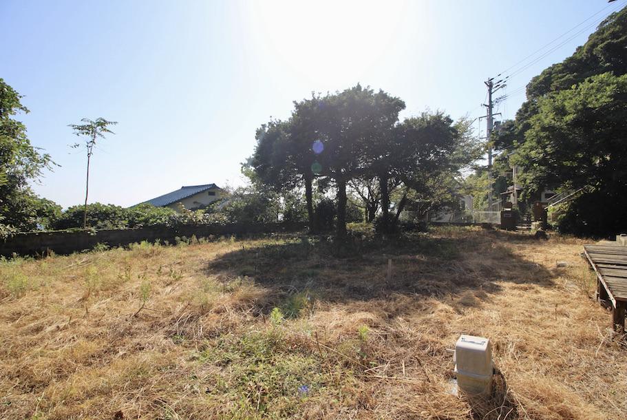 南向きに大きく開かれた庭