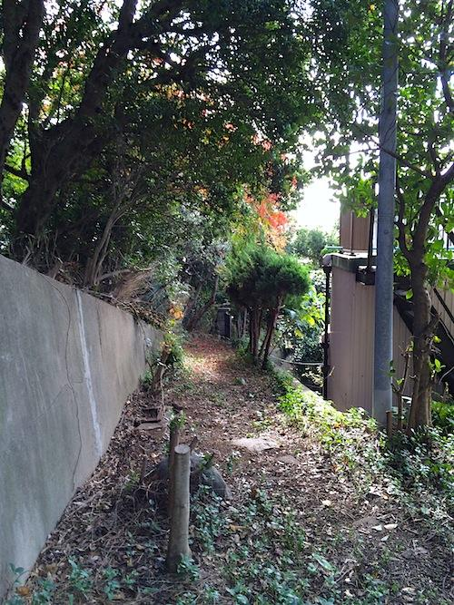雑木林に包まれる敷地通路