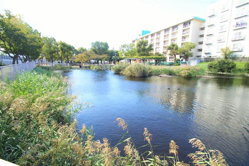 大きな池がマンション前に