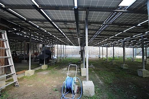 太陽光パネルが設置された東側の庭