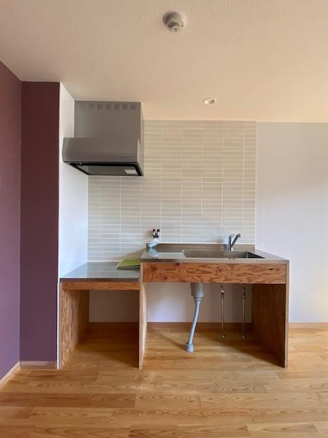ミニマルで質感のあるキッチンはむしろ嬉しい(写真の壁の色はありません)。