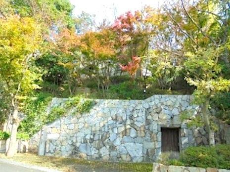 森の住人 (西宮市甲陽園目神山町の物件) - 神戸R不動産