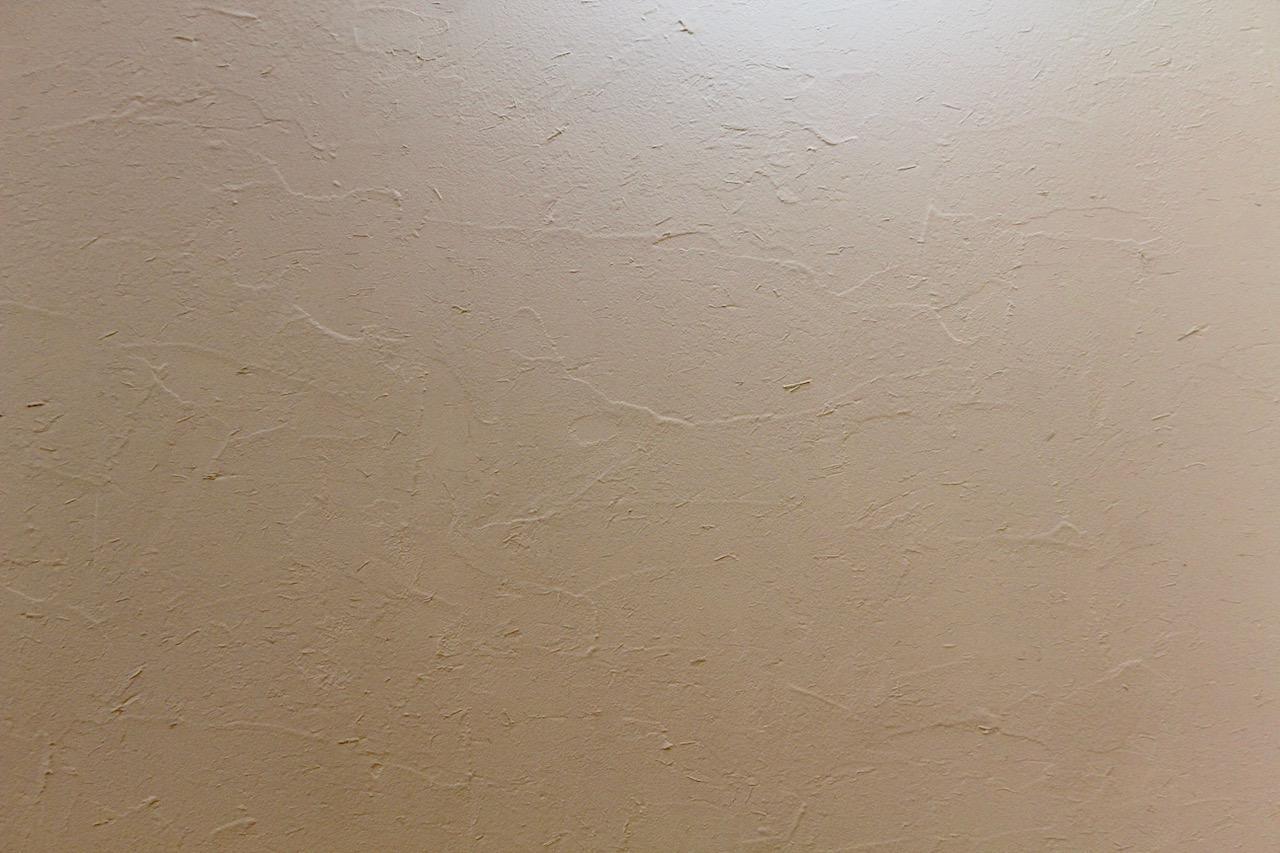 リビングの天井や壁は藁入りの高知県産漆喰(タナクリーム)仕上げ