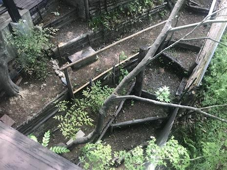 斜面に沿って階段。冒険心を煽られる。