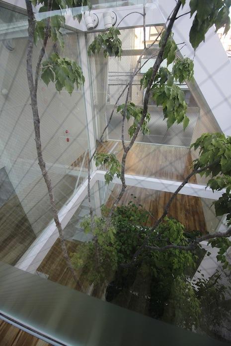3階から見下ろす中庭が心地いい