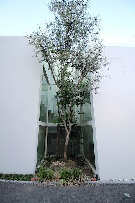西側からのファサード。建物にめり込む中庭が室内から見渡せる仕掛け