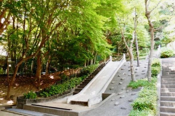 敷地内に緑豊かな公園があるのも嬉しい