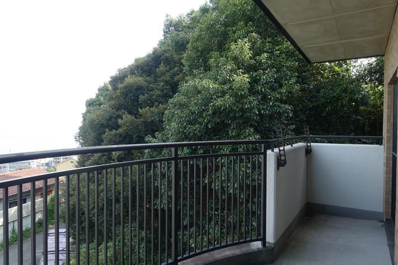 2階、背後に山の木々